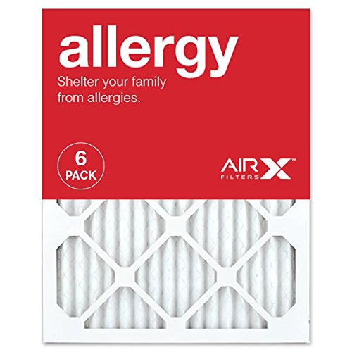 AIRx Pleated Air Filter
