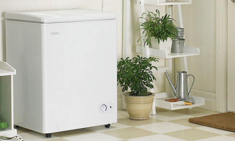 Top 10 Best Deep Freezers in 2018