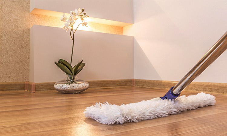 Top 10 Best Dust Mops in 2019