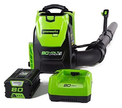 GreenWorks Cordless Backpack Blower