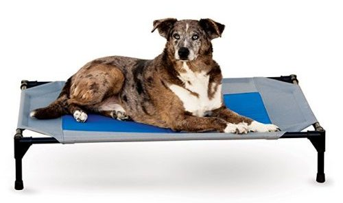 K&H Pet Products Coolin Pet Elevated Bed