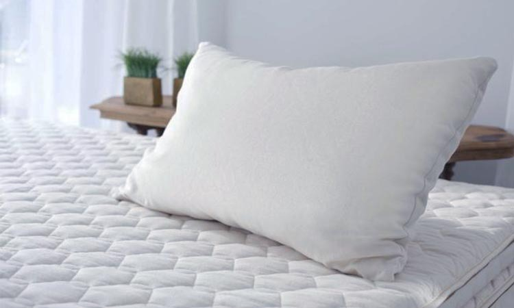 Top 10 Bamboo Pillows in 2018