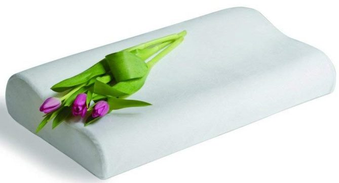 Clara Clark Memory Foam Cushion