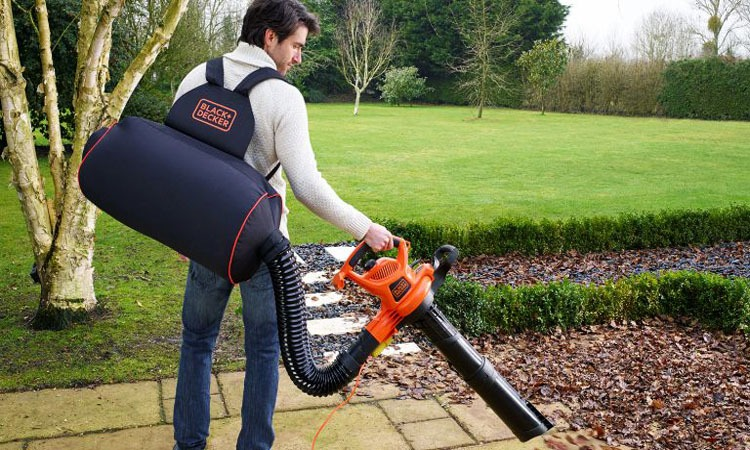Top 10 Best Leaf Blowers to buy in 2019