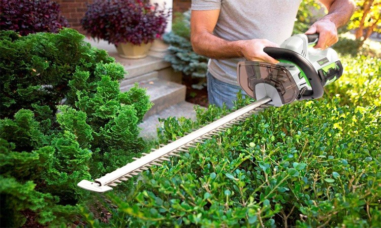 Top 10 Best Hedge Trimmers to buy in 2019