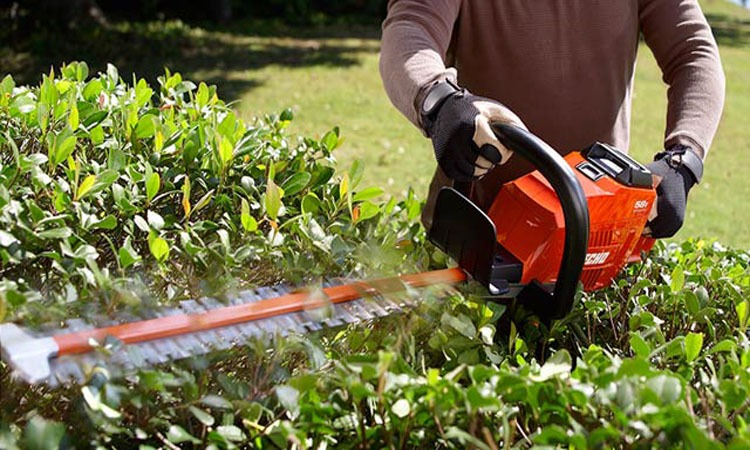 Top 10 Best Cordless Hedge Trimmers in 2019