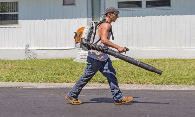 Top 10 Best Gas Leaf Blower in 2019