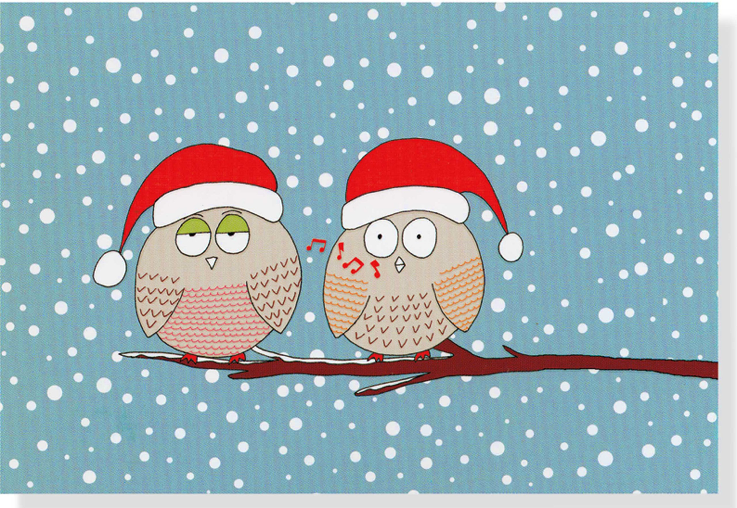 Top 10 best christmas greeting cards in 2018 great for upcoming xmas whistling owls holiday cards m4hsunfo