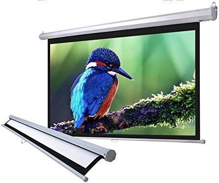 Manual Screen Projector Screen Projection 16:9 Pull Down HD Movie Screen Home Theater by FDW