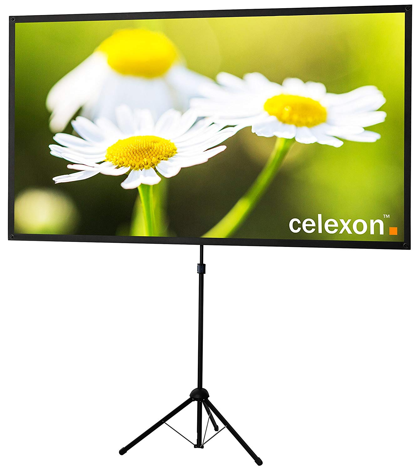 "Celexon 80"" Tripod Projector Screen"