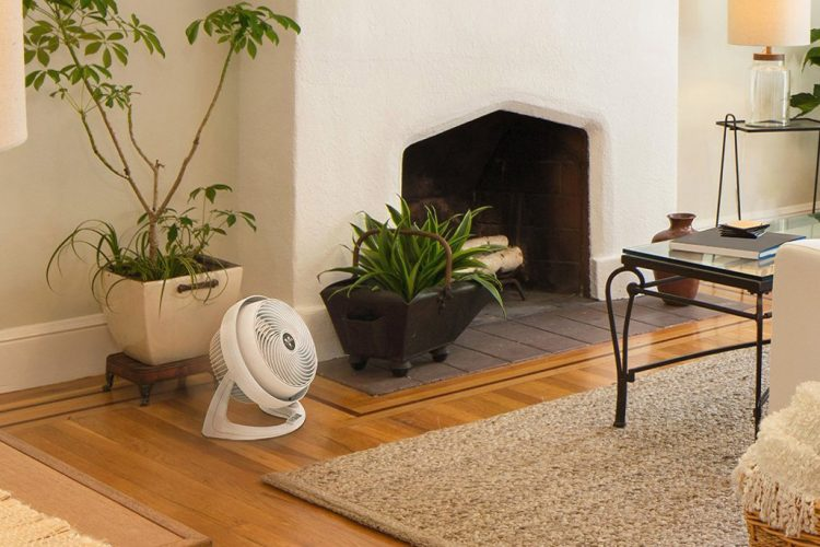 Top Ten Best Air Circulator Fan In 2019 | Highly Recommended!