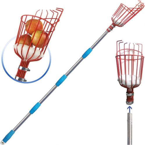 COCONUT Fruit Picker Tool, Fruit Picker with Basket and Pole,Easy to Assemble & Use Fruits Catcher Tree Picker for Getting Fruits (8ft)