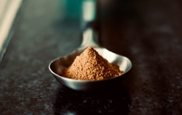 Unflavored Protein Powders