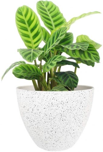 Flower Pots Outdoor Indoor Garden Planters