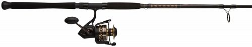 PENN Battle II Spinning Fishing Rod & Reel Combo