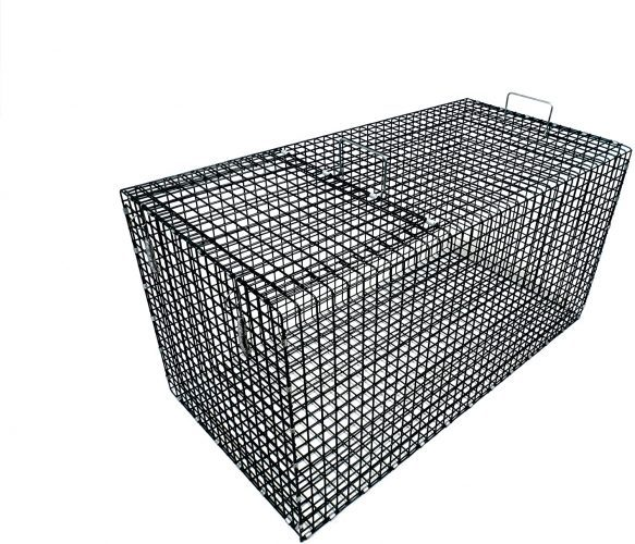 Model 402.5C - Collapsible, Large, Coated Fish Live Box