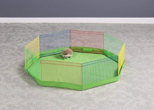 Multi-Color Small Playpen by Prevue Pet Products