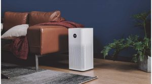 Healthy Benefits of an Air Purifier