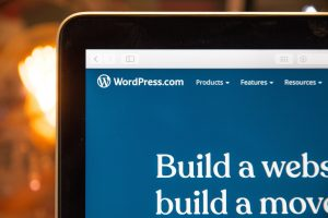 How to Set Up WordPress Theme for Beginners
