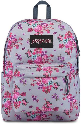 JanSport Ashbury Laptop Backpack - Comfortable School Pack
